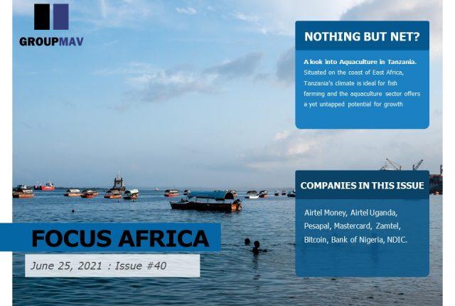 Focus Africa News Roundup- Issue #40